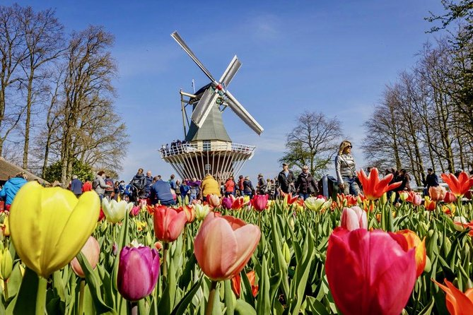 The first stop of the day are the tulip gardens of Keukenhof. Upon arrival, your guide walks you to and through the entrance, and sets up a meeting point. This way you have the opportunity to discover the beautiful park for 3 to 4 hours in your own pace. Wander around and marvel at millions of the flowers.<br><br>Meeting with your guide again to make the one-hour transfer to Muiden. This quaint village is home to Amsterdam Muiderslot Castle; a real medieval castle with a moat, towers, battlements, arrow slits and a drawbridge. It's over 700 years old and has a long and turbulent history. Discover its secrets with a live-guided tour in English exclusive for your party (audio-tour in other languages available). Enjoy some free time after the tour for your own explorations. Discover the historical gardens, where they grow vegetables from earlier times and herbs for all sorts of purposes or walk to the village of Muiden (5 min). Then it's time for the transfer back to your drop-off address.