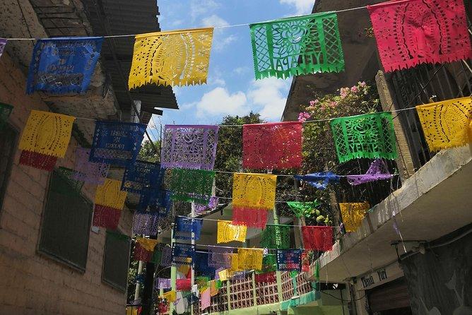 Experiencia de día completo, Puerto Vallarta, MEXICO