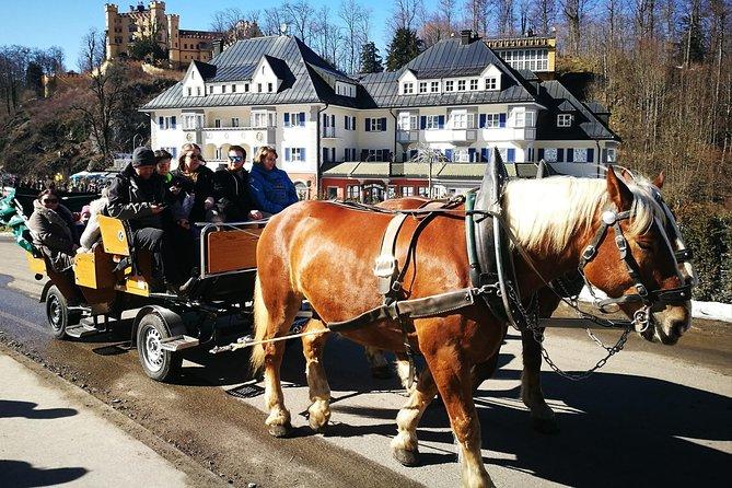 Summer Zugspitze and Neuschwanstein Castle Private Tour incl. Alpine Luge, Munique, Alemanha
