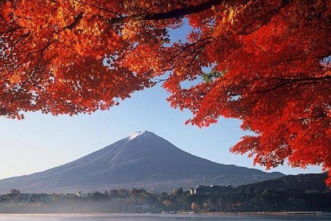 Viagem de 1 dia de ônibus pelo Monte Fuji, Hakone, Cruzeiro pelo Lago Ashi saindo de Tóquio, Tóquio, JAPÃO