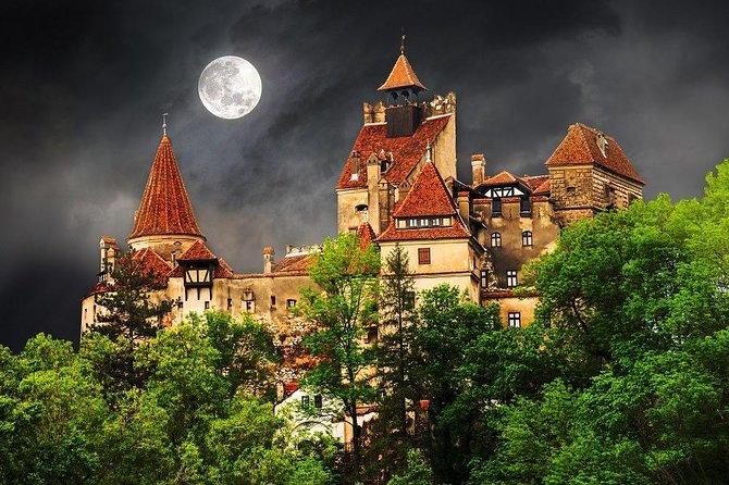 One day trip Bear Sanctuary, Dracula Castle, Rasnov Fortress from Brasov, Brasov, RUMANIA