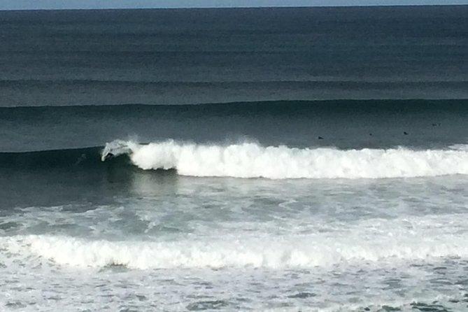 Private Great Ocean Rd Tour - Avoid The Crowds!, Gran Carretera Oceanica, AUSTRALIA