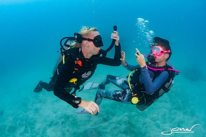 Try SCUBA Diving: 2 dives 1 day, Ko Tao, Tailândia