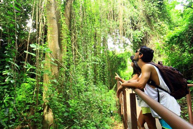 Excursión por el sendero de Costa dos Mirantes desde Fernando de Noronha, Fernando de Noronha, BRASIL