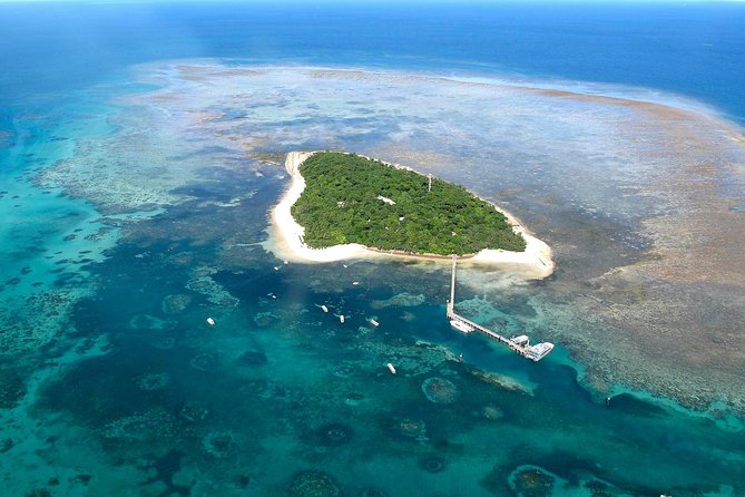 Green Island Day Trip from Cairns with Beaches Transfers, ,