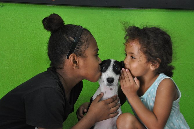 Each Wednesday, we will be offering a Shelter Visit & Tour to our Animals Fiji Head Office & Nadi Clinic.<br><br>Learn about the biggest challenges for animals in Fiji and what we are doing to help and what you can do to help.<br><br>Help us socialise and get puppies and kittens ready for adoption by assisting our team take them on a daily walk and/or play in their pens.
