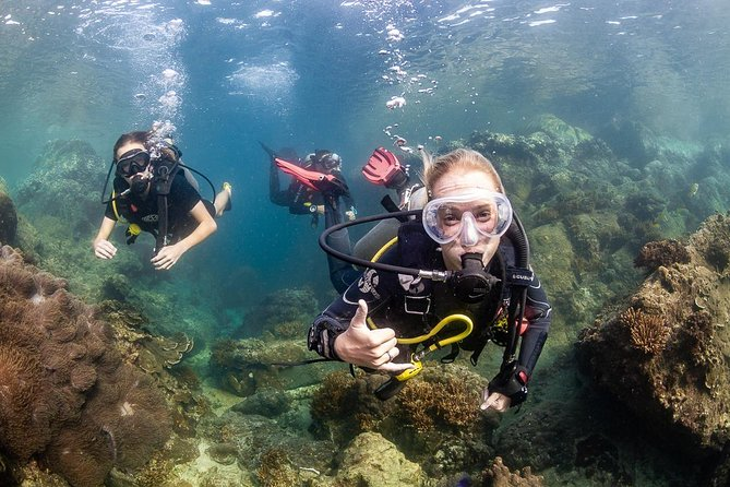 Scuba Diver course (get your license in 2 days), Ko Tao, Thailand