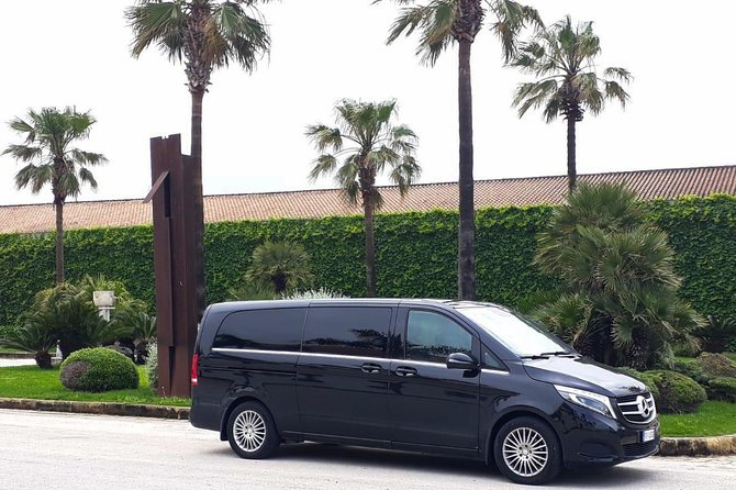 PRICE PER ROUTE<br>Book your private transfer from Palermo Falcone e Borsellino (PMO) airport to Trapani or vice versa.<br>We take you directly to any hotel or road address in Trapani in one of our cars, minivans or minibuses.<br><br>What's Included:<br>- NO HIDDEN COST<br>- PROFESSIONAL DRIVERS<br>- FREE CANCELLATION UP TO 24 HOURS BEFORE YOUR ARRIVAL<br>- MEET & GREET SERVICE (Our driver will wait for you in the arrival hall with a sign with the name of the main passenger)<br>- FREE BOTTLE WATER<br>- 60 MINUTES OF WAIT<br><br>Take advantage of our best offers and book the transfer from Palermo Falcone e Borsellino (PMO) to Trapani City / Port and vice versa.