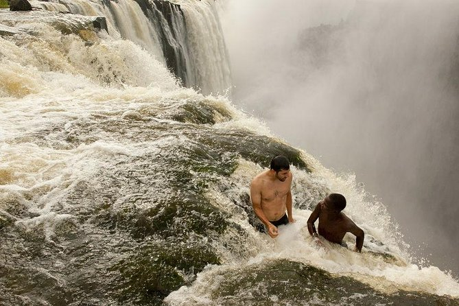 Livingstone Island, ,