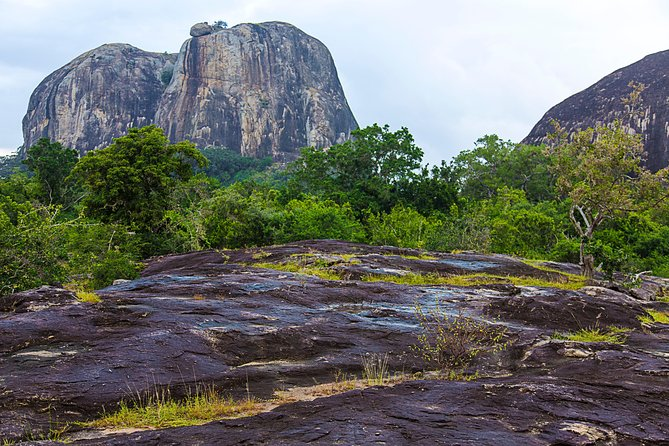 Private Tour : YALA National Park with Experienced Driver/Guide, ,