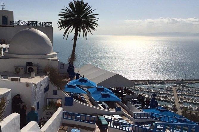 Excursión para cruceros con escala en Túnez, Tunez, TUNEZ