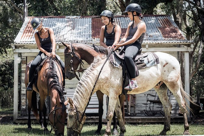 90-Minute Byron Bay Extended Forest Trail Horse Ride, Byron Bay, AUSTRALIA