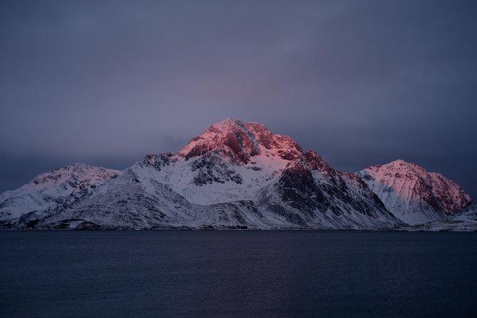 Northern Lights Cuisine Cruise, Tromso, NORUEGA