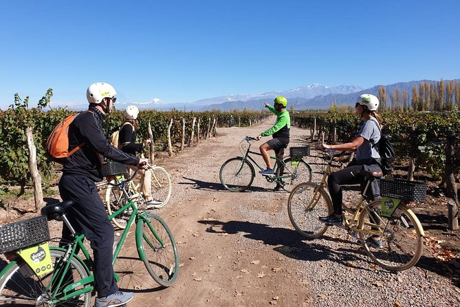 MORE PHOTOS, Bike, wines & lunch at Luján de Cuyo (Mendoza)