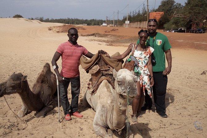 Pink lake with Bandia réserve wildlife minimum 2 people, Dakar, SENEGAL
