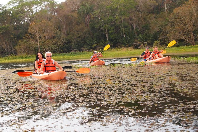 Private Kayaking tour in the Chagres River, Gamboa, PANAMÁ