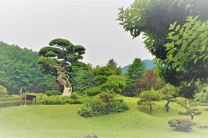Private Group to Nami Island, the Garden of Morning Calm, Seul, COREA DEL SUR
