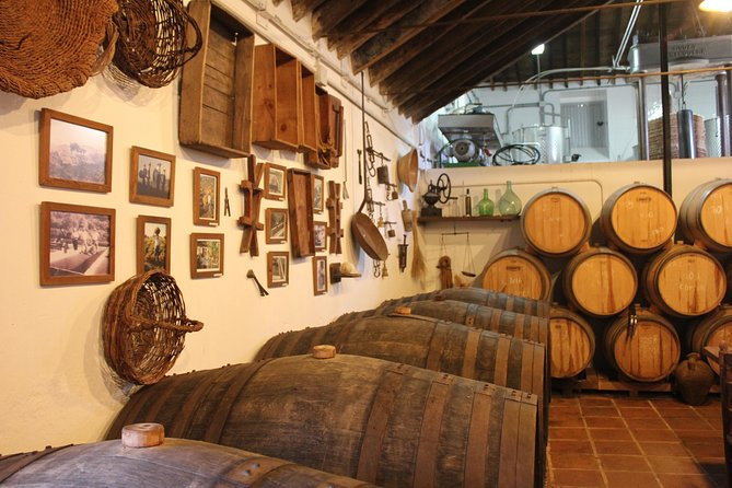 Sun and Wine Route - Small group, wine tasting and lunch included, Malaga, Espanha