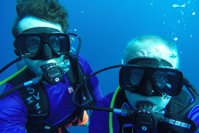Our SCUBA diving tours take you by boat to the Key Largo reef 6 miles offshore. Certified divers will be able to SCUBA dive the amazing world famous coral reefs