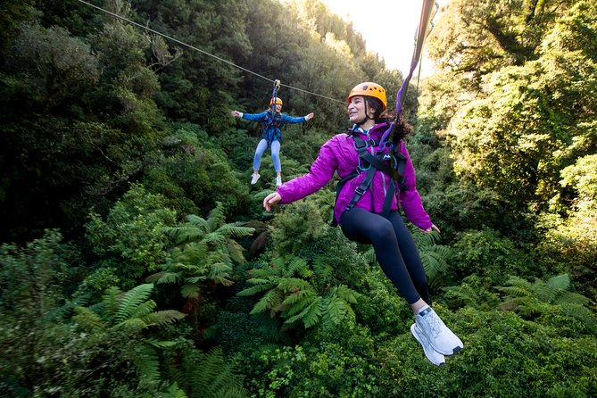 See New Zealand's one and only cliff walk, built around a volcanic rock, floating staircases and a 400m tandem Zip-line that you can race your loved ones down…just to name a few! An amazing engineering feat that allows the exploration of an ancient indigenous forest! <br><br>You will be taken to another world, full of ancient giants and lifeforms you can't see anywhere else in the world! <br>Since we opened in 2012 we have been protecting this special place and when you come along, you will be too! A portion of your entry goes straight back to our conservation project to help us continue to rescue and look after this magic place. <br>We take photos for you and they are FREE after your tour via an email link.You are welcome to take as many videos and photos as you like too – you'll be wanting to share this experience with everyone!!<br>