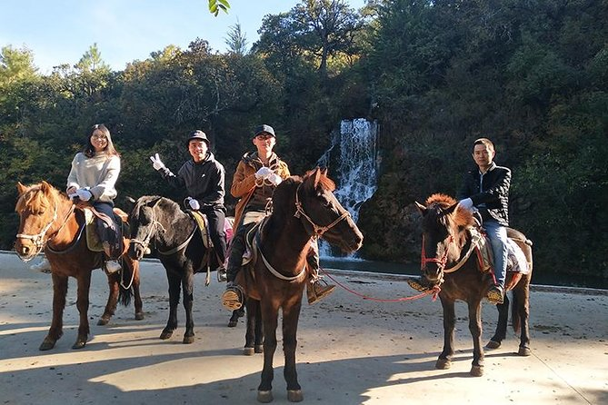 Half Day Lijiang horse-riding&sightseeing&Local culture tour, Lijiang, CHINA