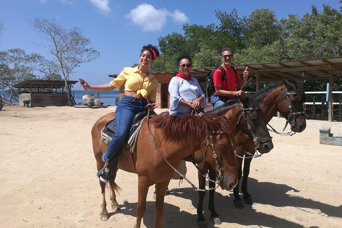 Discover the lush jungles and sandy beaches of west end on horseback during this 4-hour horse-riding and beach adventure shore excursion. Tromp through the luxuriant jungles of this Caribbean island on horseback, keeping your eyes peeled for local wildlife along the way. Then finish your day with a refreshing trip too one of the island's best stretches of sand, where you can kick back and relax on the beach. Your excursion includes round-trip port transport, horseback ride and local guide.day pass on the beach guaranteed on-time return to your ship.