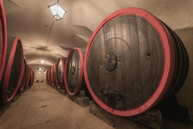 Wine Tasting Experience and Guided Tour at Villa Mosconi Bertani in Verona, Verona, ITALIA