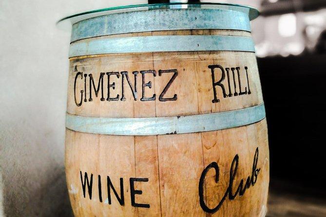Conociendo los vinos del nuevo mundo. Degustación y almuerzo en Valle de Uco, Mendoza, ARGENTINA