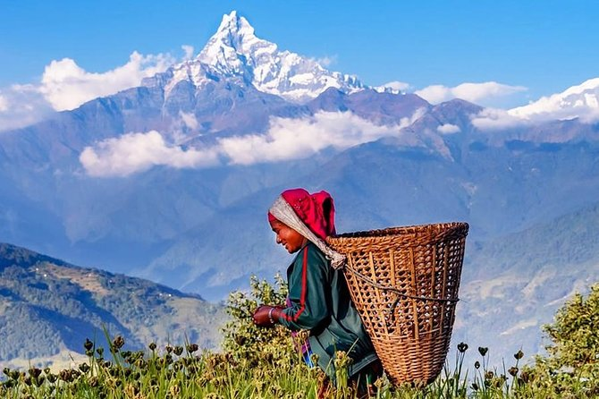 Spend a day away from the city to soak in the natural beauty of the mountain ranges and Nepalese villages. During this 6/7-hour trek, you will be accompanied by a professional guide as you cover the Phedi, Dhampus village and Hemja.. The trek starts after driving to Phedi through a scenic highway, and ends at Hemja.