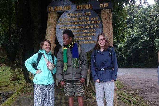 Mountain Kilimanjaro Day Trip, Moshi, Tanzania