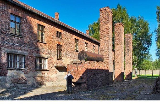 Excursión de medio día al Museo de Auschwitz-Birkenau desde Cracovia, Cracovia, POLONIA