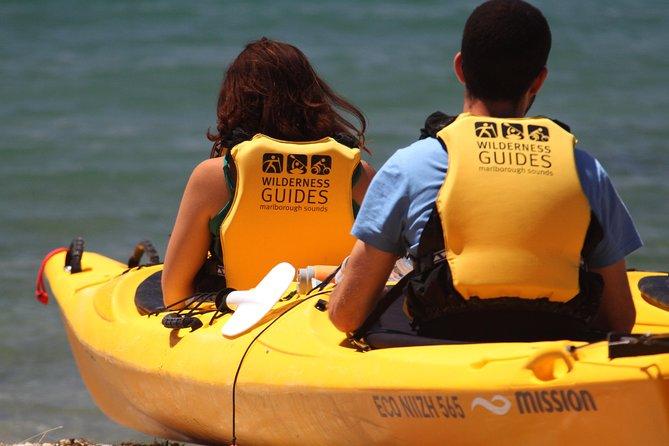 Full Day Queen Charlotte Kayak and Walking Tour from Picton, Picton, NOVA ZELÂNDIA