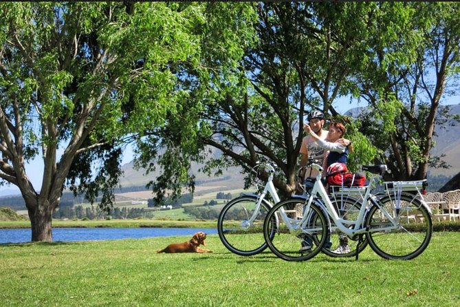 Using our Dutch style city Ebikes we'll take the quiet roads around Hermanus, taking in the stunning views, stopping at Grotto Beach for a coffee if desired. Then off to the new and old harbours.