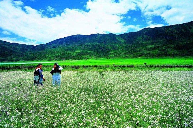 Private trekking tour to Wenhai lake from Lijiang half day service, Lijiang, CHINA