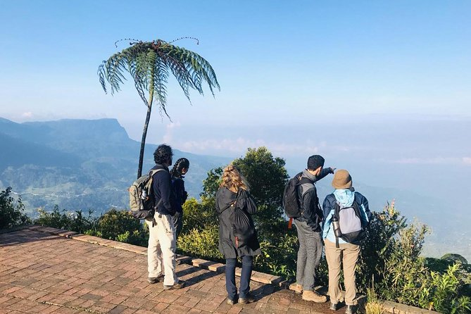 Birdwatching day at Chicaque Cloud Forest., Bogota, COLOMBIA