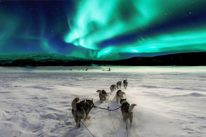 We are most experienced guides in Finish Lapland and know all the best areas to find and show you this unique phenomen!