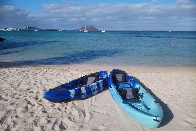 Combo E-bike + Kayak / Paddle Surf Tour, Puerto del Rosario, Espanha