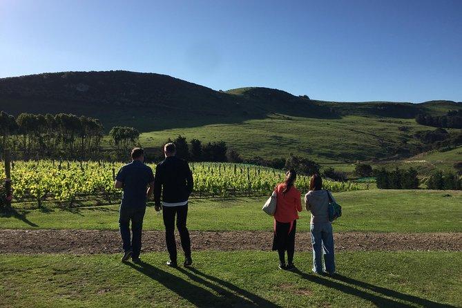 Food and Wine Tasting Tour of Waiheke Island from Auckland, Isla Waiheke, New Zealand