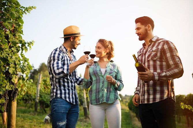 Visit a famous estate in Lucca and discover how wine is born, scenting aromas and flavors which vary each different day - this is an experience which brings the visitor back to the simple and immutable rhythms of nature.<br>
