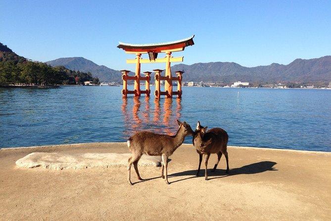 Miyajima full day tour, Hiroshima, JAPAN