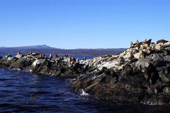 Beagle Channel Sailing Tour from Ushuaia, Ushuaia, ARGENTINA