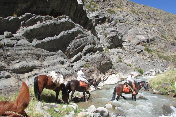 Full day ride at the foot of The Andes, Mendoza, ARGENTINA