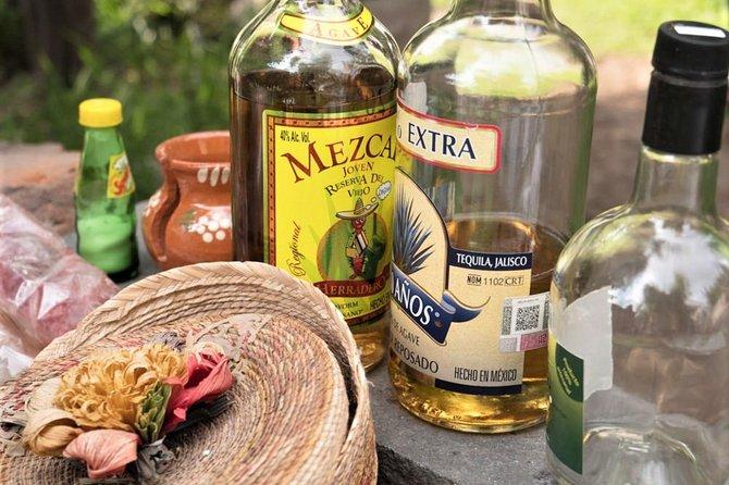 Experience Mexico City: Teotihuacan Day-Trip & Dinner with the Locals, Ciudad de Mexico, MÉXICO