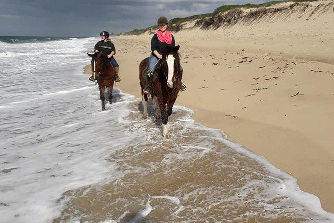 You will ride by horse on the beach.<br><br>You can go to the beach, have fun and return the same day with an excellent company and have the possibility to know some extra points of the city of maputo and its history.