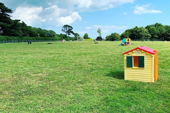 Freedom Field Bluebells is a secure 2 acre private dog walking field.<br><br>Bookings are made online via our website and start from only £5per 1/2 an hour.<br><br>The field will be private for your booking. <br>