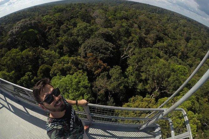 Botanical City Tour, Manaus, BRASIL