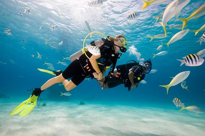 This Beginner Bali Scuba Dive Experience is great for those who are never dive before or not confident swimmers but would like to experience the underwater world.<br><br>If you can't swim, don't be afraid, here you will able to explore the Bali marine life. Enjoy a fun and easy dive for beginners with a dive master to see tropical fish with no experience required and all safety equipment provided.<br><br>The best choice for you who looking for: Bali Scuba Diving, Beginner Scuba Dives in Bali, Things To Do in Bali, and Bali Experiences.