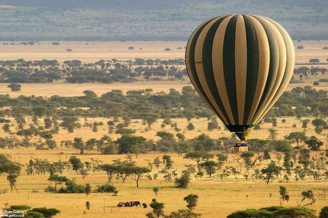 Serengeti Safari Booking does not skimp on what you came to see. Our company free pick-up and drop off from the hotels and Airports once they confirm to do a Safari with us.We also allocate good Hotels, Lodges for the travelers who didn't book.A joined group Safari provides sharing of ideas and cost among the travelers while exploring the African culture and wildlife in their habitats. A 4 day Safari in Serengeti, Ngorongoro Crater, Lake Manyara and Tarangire National Park provides enough time to explore the great number of wildlife specifically the big 5 in a single day and other wildlife such as Zebra,Gazelle, different reptiles,endangered wildcats, wildebeest, baboons number of bird species including Flamingo,and other many. All the wildlife survive in a diverted vegetation such as woodland, evergreen underground water forest wherwby the prey graze,climb,hide while predators find a vantage in acacia and baobab trees for spotting the prey