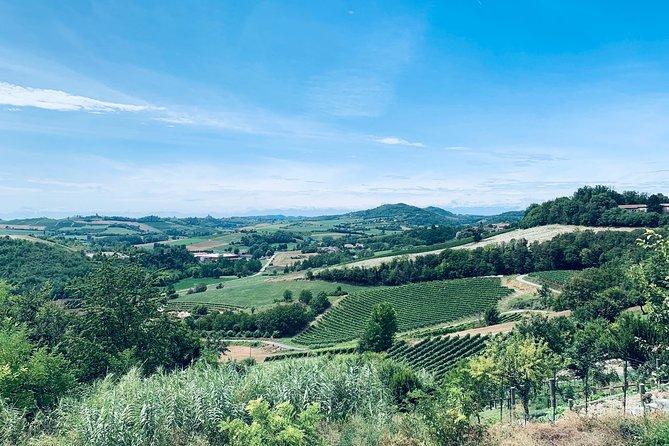 Private Barolo Wine Tour with Winemaker, Langhe-Roero y Monferrato, Itália