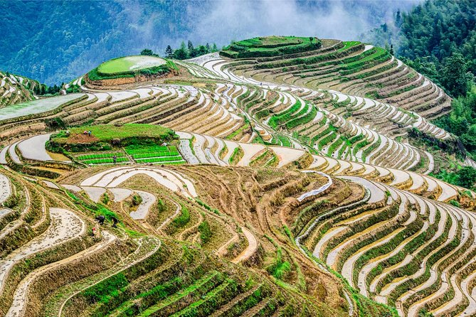 Longji Rice Terraces and Ethnic Village Private Tour, Guilin, CHINA
